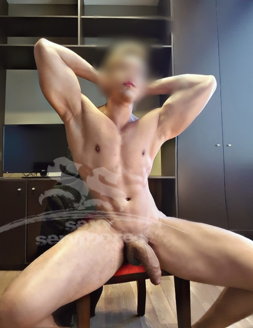 videos x gay quiero ser escort masculino